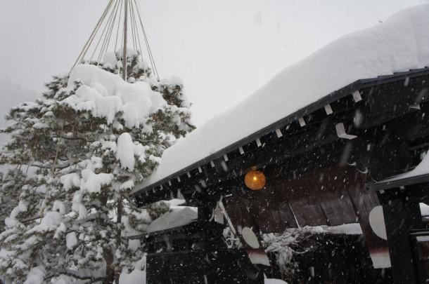 大雪となってます。