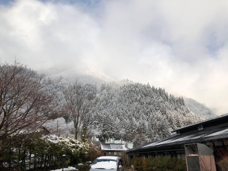久しぶりに雪がふりました。