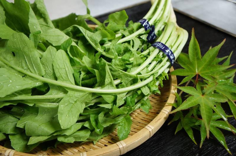 高冷地野菜「大根菜」