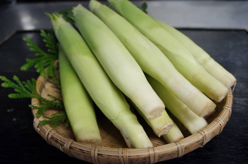 高冷地野菜「ヤングコーン」