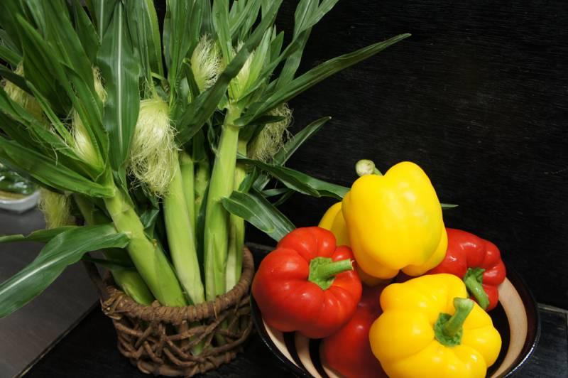 彩り豊か夏野菜!