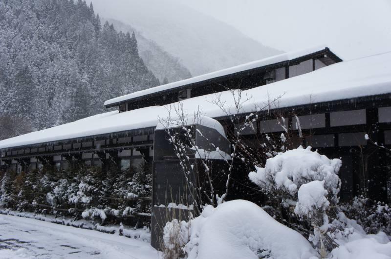 今年一番の豪雪です☃