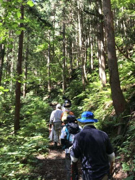 福地山トレッキングルートの整備を行いました。